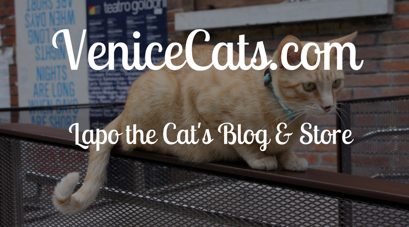 Venice Cats.com