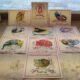 Artistic caz catz cats Postcards set_1 by Michal Meron VeniceCatscom_1